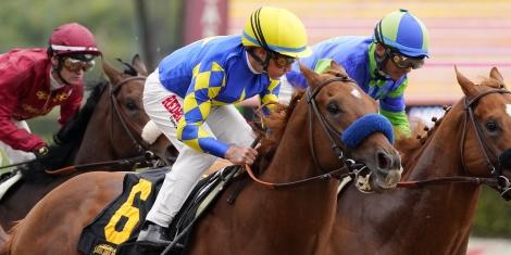 Horse Racing Picks Memorial Day Santa Anita