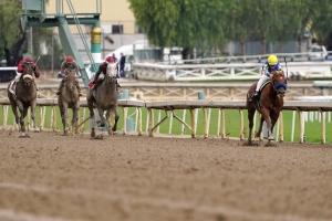 Horse Racing Picks Dennis Garcia