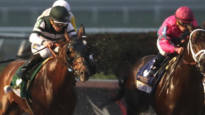 Horseracing picks Gulfstream Park