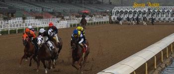 Horse Racing Picks Santa Anita