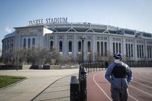 LMB 2020 Predictions Yankee Stadium