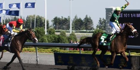 Woodbine Horse Racing Picks