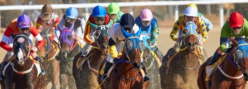 Horse racing picks Belmont and Woodbine