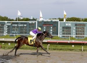 Woodbine Pick, Ellis Park and Saratoga Best Bets