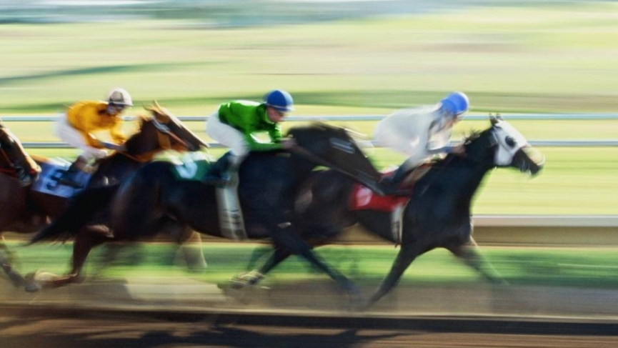 Horses 4 horse race e1596633460679