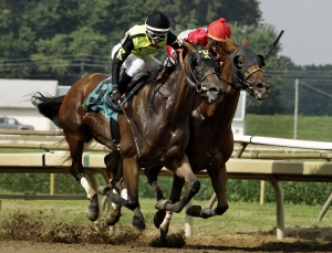 Saratoga Picks and Indiana Downs Best Bet