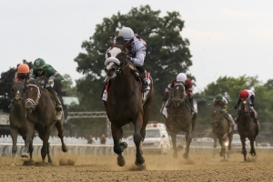 Travers Stakes PIcks and Predictions
