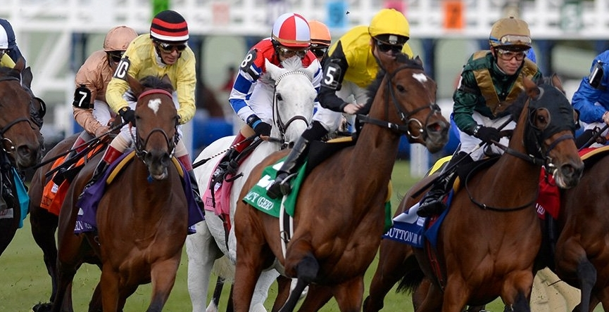 Saratoga Predictions and Woodbine Best Bet August 21