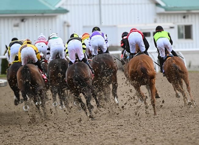 2020 Woodbine Mile Stakes Free Pick Handicapping Odds Prediction1