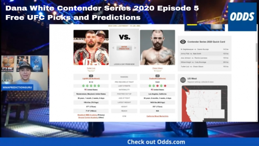 Dana White Contender Series Episode 5 picks