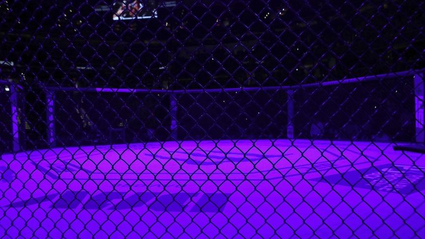 Matt Schnell vs Tyson Nam Pick - UFC Vegas 10