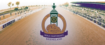 Breeders Cup Picks and Predictions