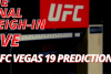 UFC Vegas 19 Picks