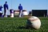 MLB Bettimg 2021 Primer